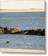 Diving Coney Island Metal Print