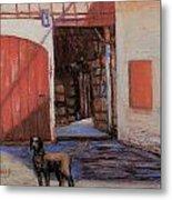 Dog And Barn Metal Print