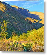 Dog Canyon Nm Oliver Lee Memorial State Park Metal Print