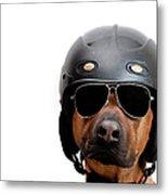 Dog Dressed As Police Man Metal Print