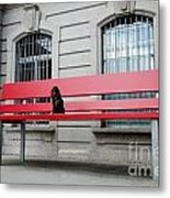 Dog On A Big Red Bench Metal Print