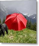 Dog On The Top Of A Mountain Metal Print