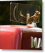Dog On Truck  Metal Print