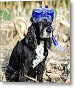 Dog With Diving Mask Metal Print