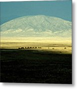 Dome Mountain Metal Print