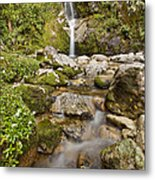 Dorothy Falls Near Lake Kaniere New Metal Print