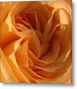 Double Yellow Rose Metal Print