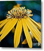 Double Yellow Metal Print