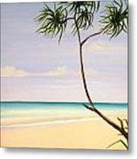 Doum Palm Metal Print