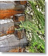 Dovetail Log Construction Metal Print