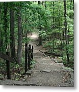 Down The Trail Metal Print by CGHepburn Scenic Photos