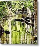Downstream Reflections Metal Print