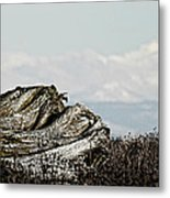 Dozing With Mount Baker Metal Print