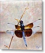 Dragonfly Clinging Metal Print