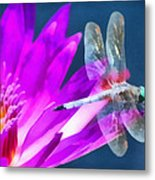 Dragonfly Lily Metal Print