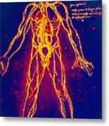Drawing Of Human Venous System (leonardo Da Vinci) Metal Print