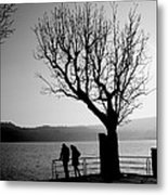 Dreaming In Front Of The Lake Metal Print