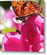 Dreaming Of Butterflies And Pink Flowers Metal Print