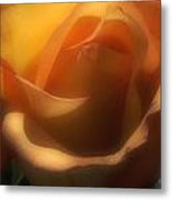 Dreams Of Rose Metal Print