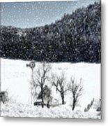 Dreams Of Snow  Metal Print