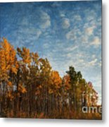 Dressed In Autumn Colors Metal Print by Priska Wettstein
