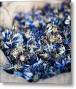 Dried Blue Flowers In Burlap Bag Metal Print by Alexandre Fundone