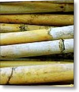 Dried Canes Metal Print