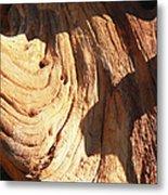 Driftwood 1 Metal Print