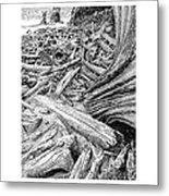 Driftwood Black Cat Metal Print