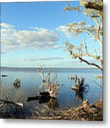 Driftwood Landscape 1 Metal Print
