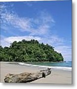 Driftwood On A Tropical Beach Bordered Metal Print