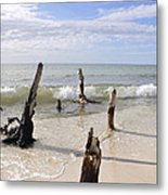Driftwood Stands Watch Metal Print