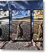 Driftwood Triptych Metal Print