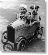 Driving Dog Metal Print by Norman Smith