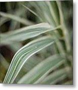 Drops Of Grass Symmetry Metal Print