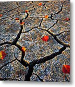 Dry Autumn Metal Print by Mike Norton