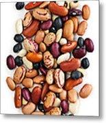 Dry Beans Metal Print by Elena Elisseeva