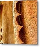 Dry Brown Aloe Vera Leaf Metal Print