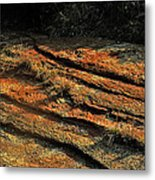 Dry River Country Metal Print