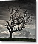 Dry Sunset Metal Print