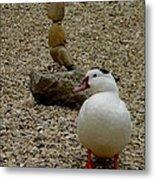 Duck With Rock Sculpture Metal Print