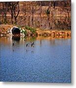 Ducks Flying Over Pond I Metal Print