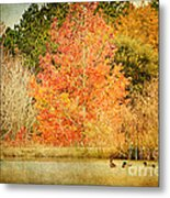 Ducks In An Autumn Pond Metal Print