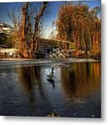 Ducks On Ice Metal Print