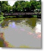 Ducktown Polarized River  Metal Print