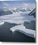 Dugdale And Murray Glaciers Antarctica Metal Print by Tui DeRoy
