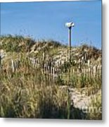 Dune Bird House Metal Print