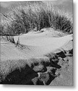 Dunes On A Staten Island Beach Metal Print