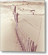 Dunes On The Cape Metal Print