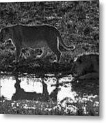 Dusk Reflections Metal Print